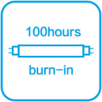 100 hours burn in